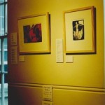 Visual Voice II - Joan Walsh 2001